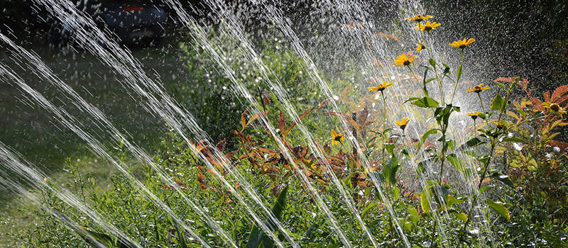 Bomba de agua para regar el jardín