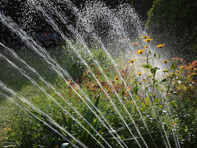 Qué tipo de bomba de agua necesitas para regar tu jardín